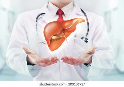 Doctor with liver in hands in a hospital