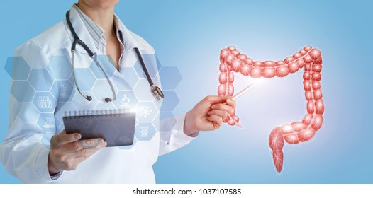 Doctor shows colon of a person on a blue background.