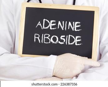 Doctor shows information: adenine riboside