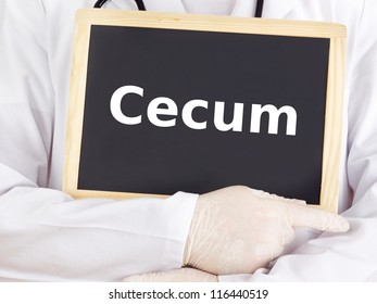 Doctor shows information on blackboard: cecum