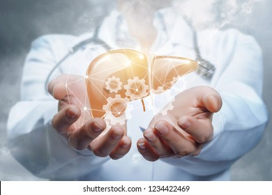 A doctor with a stethoscope around her neck is holding a digital liver model inside the cogwheel system. The concept is the liver working process principle.