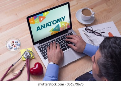 Doctor working on a laptop and ANATOMY on his screen