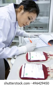 Doctor writes data from the blood bags. Medical Staff working in a laboratory with the storage of blood. Research blood in a hospital.