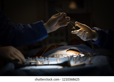 Doctors in surgery room sending medical device to other in surgeon operation.