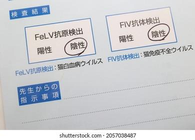 Documents on FIV,FeLV. Translation: test results. Antigen. Antibodies. Detection. Positivity. Negative. Feline leukemia virus. Feline immunodeficiency virus. Instructions from the doctor.