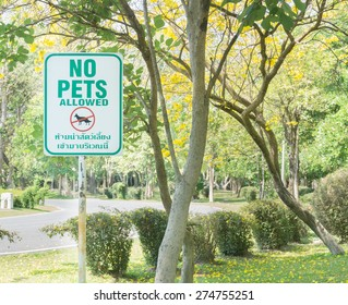 dog allowed sign in park, English and Thailand language sign