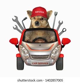 The dog auto mechanic in a cap is in the red car of the vehicle repairs company. White background. Isolated.
