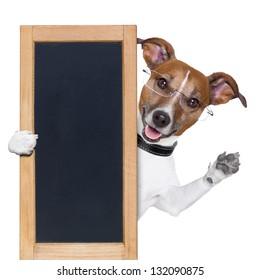 dog behind a blackboard banner waving