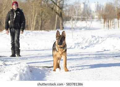 Dog and boy in the winter park
