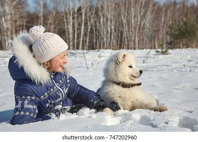 Dog breed Samoyed husky with girl outdoors. puppy dog for a walk with his owner