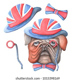 A dog of British Bulldog breed wearing a hat with other accessories. Symbols of England and the British flag. Watercolor illustration for printing on clothes and postcards