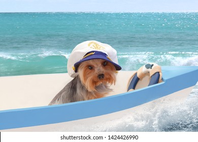 A dog in a captain's cap sits in a boat against the sea. Collage.