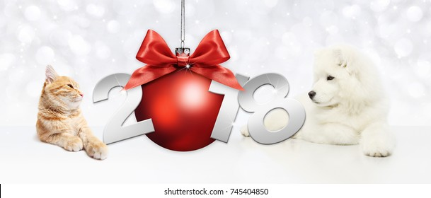 Dog and cat with christmas red ball and happy new year text on white background