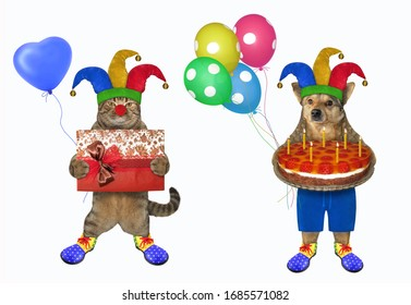 The dog and the cat dressed in costumes of clowns. The first of them holds a holiday fruit pie with seven candles, the second holds a gift box. White background. Isolated.