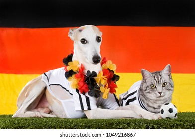 Dog and cat as german soccer fans