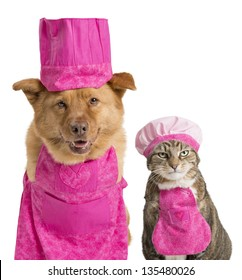 Dog and cat wearing chef hats and aprons.