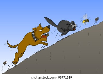 The dog chases the cat, the cat wasp, wasp beetle