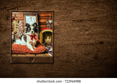 Dog Christmas card, cute puppy and antique clock at midnight with copy to write message or put photo.