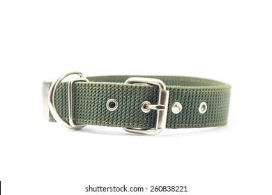 dog collar isolated on white background