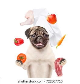 the dog in the cook's cap juggles with food  for pets. isolated on white background
