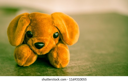dog doll on the table with dramatic tone