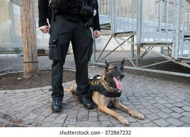 dog explosive policeman