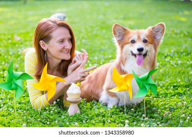 dog in the family - birthday off beautiful corgi fluffy on green lawn and colorful party flags on the background