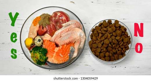 Dog food Natural raw diet versus against kibble dry food Concept close up