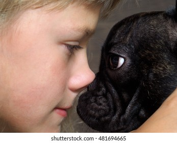 Dog and girl nose to nose. Tenderness, love, friendship. Sweet and loving picture of the child and dog friendly
