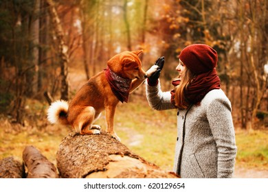 A dog gives highfive to her mistress