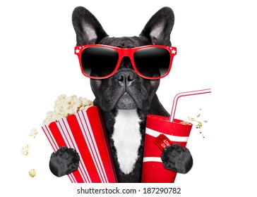 dog going to the movies with soda and glasses
