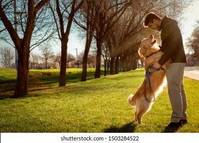 Dog (golden retriever) and man staring at each other in a lovely way. Park background with the daylight and sun rays behind. Horizontal Photography