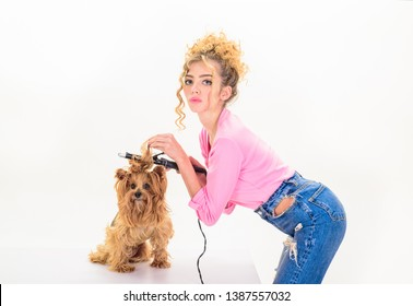 Dog grooming. Pet salon. Petshop. Dog. Beauty salon for animals. Grooming master making dog hairstyle. Pet grooming. Animal clinic. Vet.