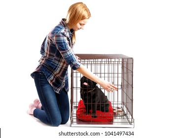 Dog happy in Crate Cage. Young woman opens door, takes shelter out.