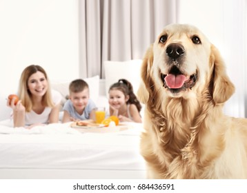 Dog and happy family on background