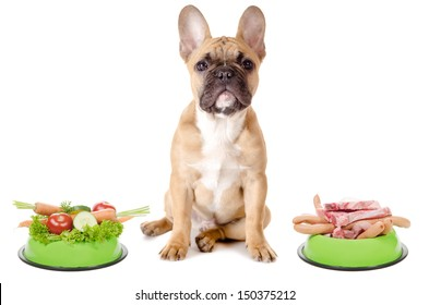 a dog has the choice between meat or vegetables before white background