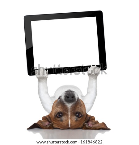 dog holding a tablet