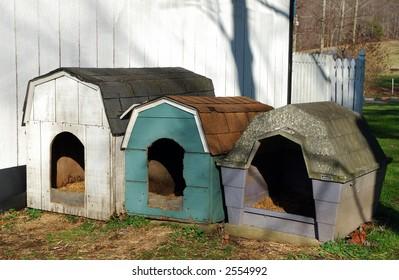 Dog Houses in Eastern Kentucky