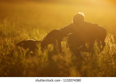 Dog Hovawart with boy in the strong back light