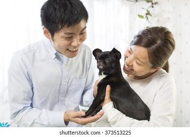 Dog and Japanese youth
