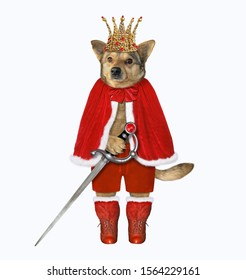 The dog king in a red cloak, a golden crown and boots has a sword. White background. Isolated.