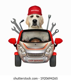 A dog labrador auto mechanic in a cap drives a red car with wrenches. White background. Isolated.