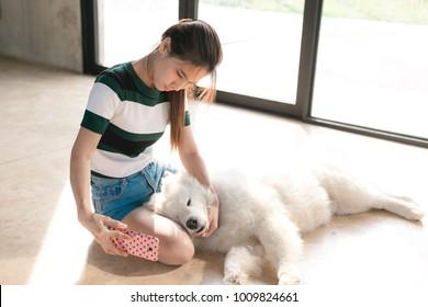 The dog is lying on the owner's lap. Samoyed dog sleeping