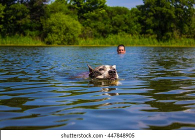 Dog and a man floating in the river.