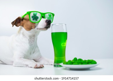 Dog with a mug of green beer and glazed nuts in funny glasses on a white background. Jack russell terrier celebrates st patrick's day - Shutterstock ID 1914714157