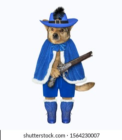 The dog musketeer in a blue cloak, a hat with a feather and boots has a flintlock pistol. White background. Isolated.
