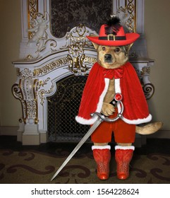 The dog musketeer in a red cloak, a hat with a feather and boots with a sword is standing near a fireplace in the palace.