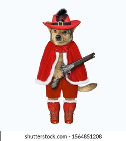 The dog musketeer in a red cloak, a hat with a feather and boots has a flintlock pistol. White background. Isolated.
