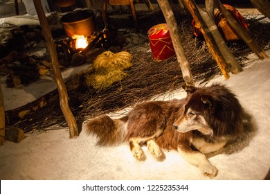 Dog near fire of a Lappish tent of the Sami people tribes in Finland.