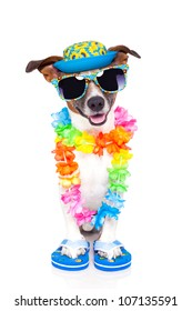 dog on vacation with hawaiian lei and fancy hat